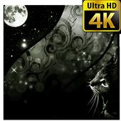 Black Wallpapers 4K UHD icon