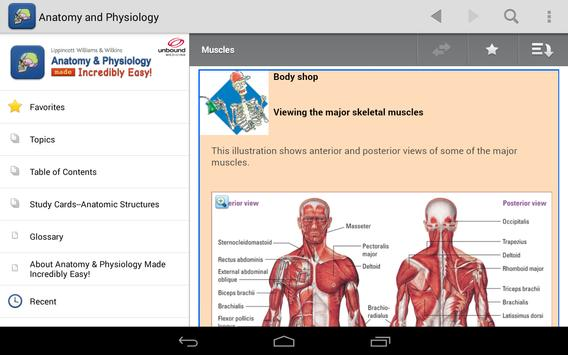 Anatomy Physiology Made Easy Apk Download Free Medical App For