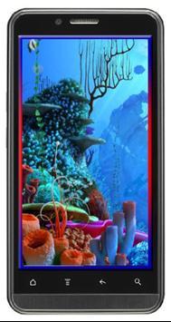 Wallpaper Bawah Laut Seaworld For Android Apk Download