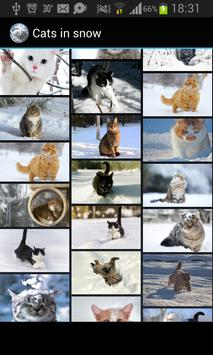 Cats in snow apk screenshot