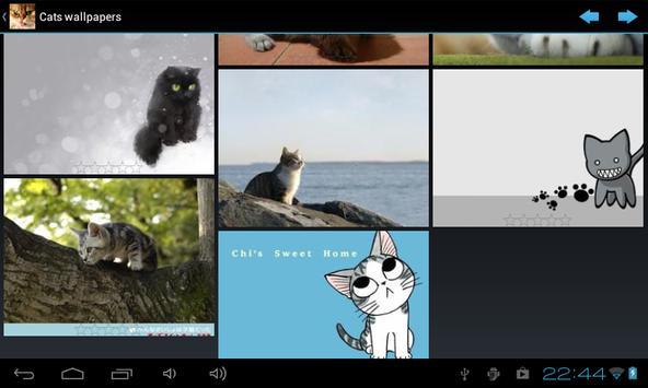 Cats wallpapers apk screenshot