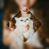 Picture Art icon