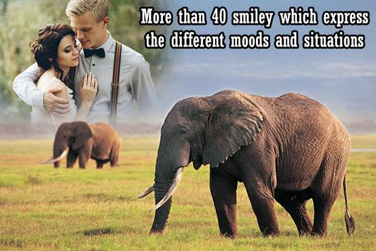 Wildlife Photo Frame poster