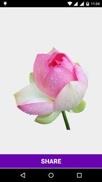 Flower Stickers for watsapp apk screenshot