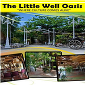 St.Maarten Little Well Oasis icon