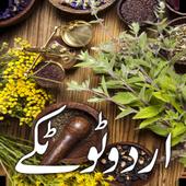 Urdu Totkay - Tips icon