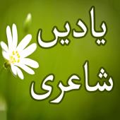 Yaadein Shayari icon