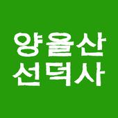 목포 선덕사 icon