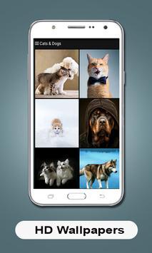 HD Wallpapers (Backgrounds) screenshot 5