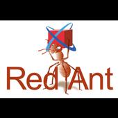 RA Image icon