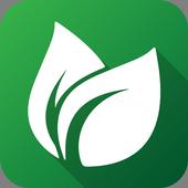 Справочник растений icon