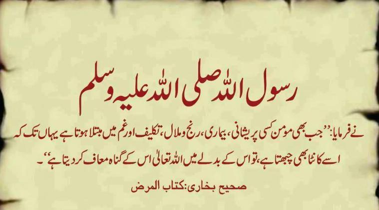 Kalonji hadith reference