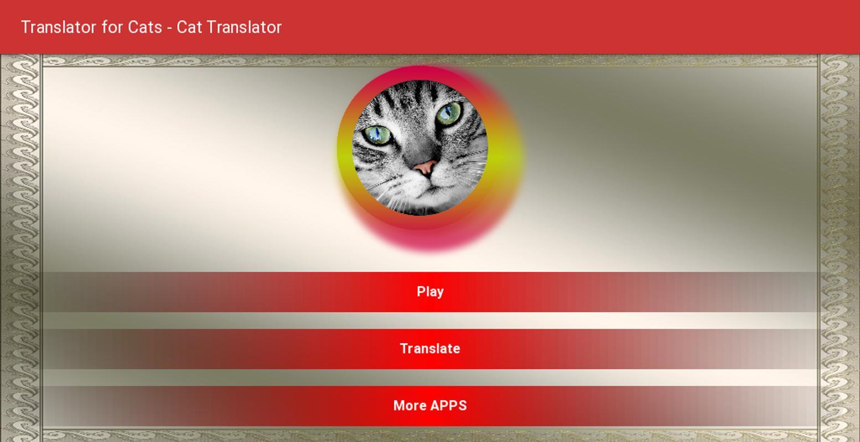 Переводчик с кошачьего языка » хочу все знать.