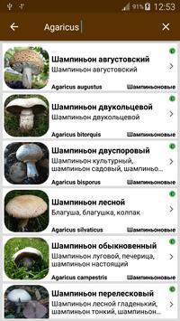 Грибы screenshot 14