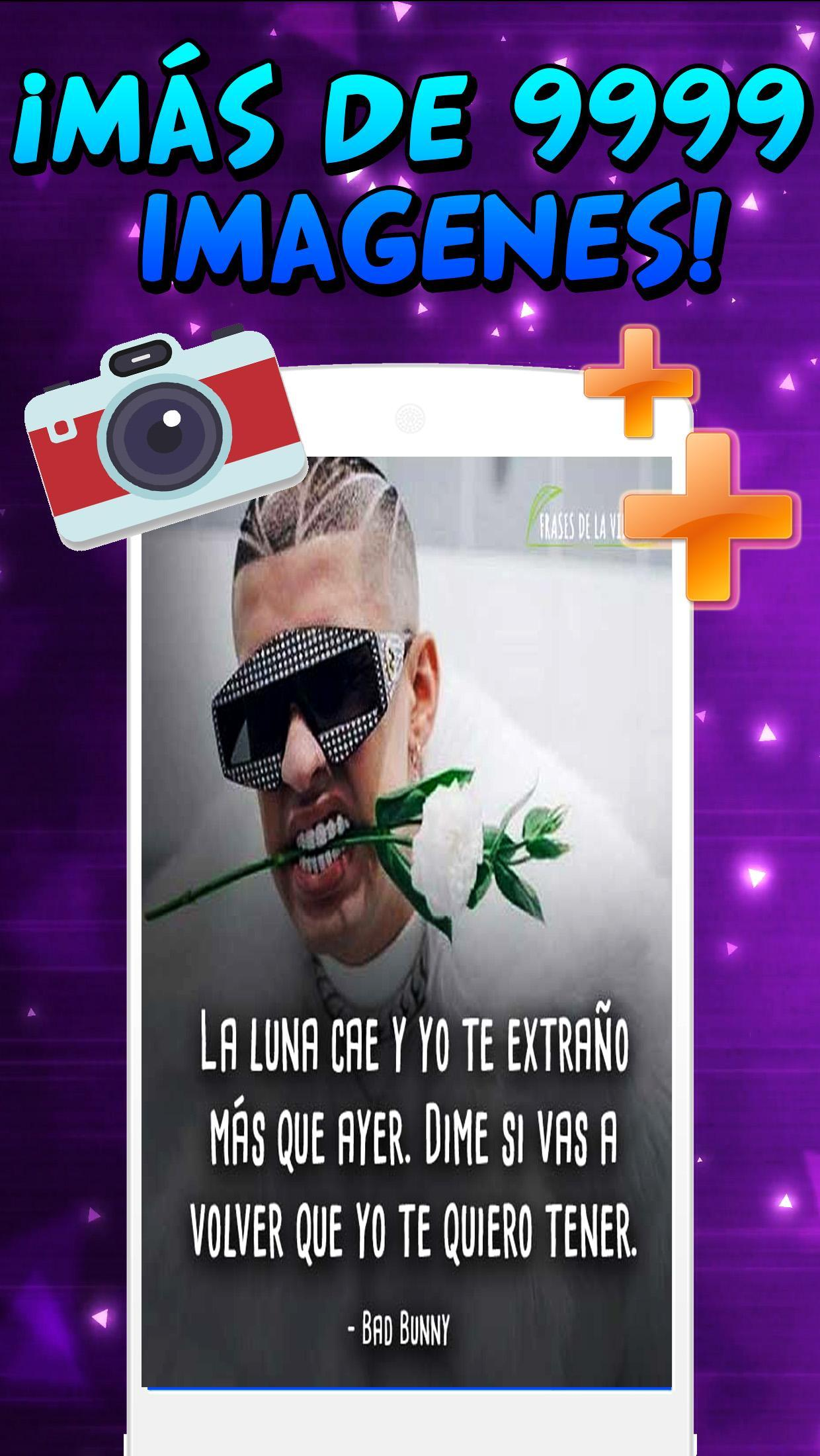 Frases De Bad Bunny For Android Apk Download