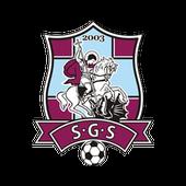 FC Sfantul Gheorghe icon