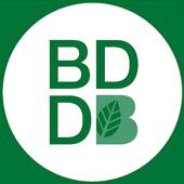GVA BDB icon