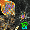 3D Biology + アイコン