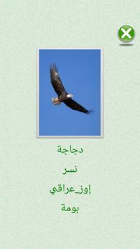 Flashcards Arabic Lesson apk screenshot