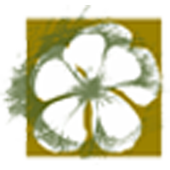 AlamKulkul Boutique Resort icon