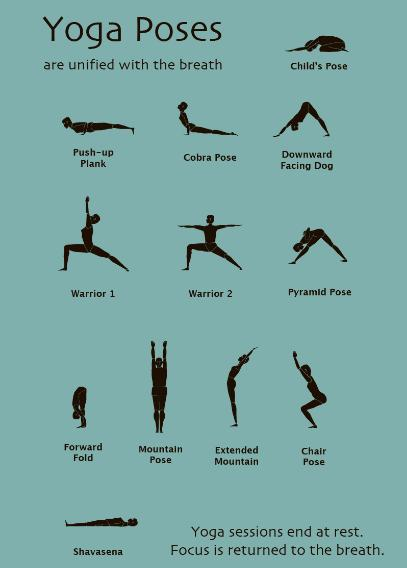 Easy Yoga Poses For Android Apk Download