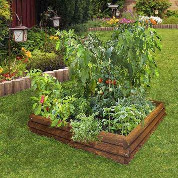 Vegetable Garden Ideas screenshot 4
