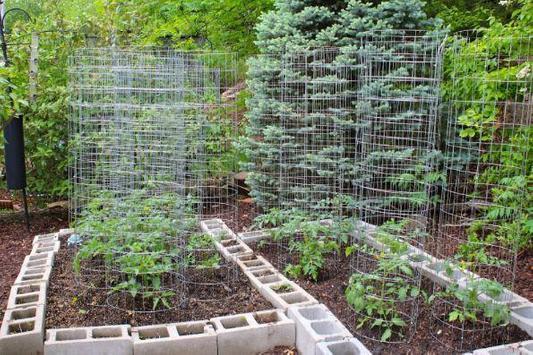 vegetable garden ideas screenshot 3
