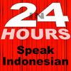 In 24 Hours Learn Indonesian (Bahasa Indonesia) ícone