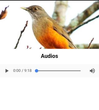 Sabia Laranjeira screenshot 1