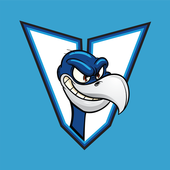Vermont Vultures Basketball icon