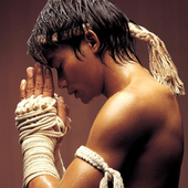 Martial Arts Wallpapers icon