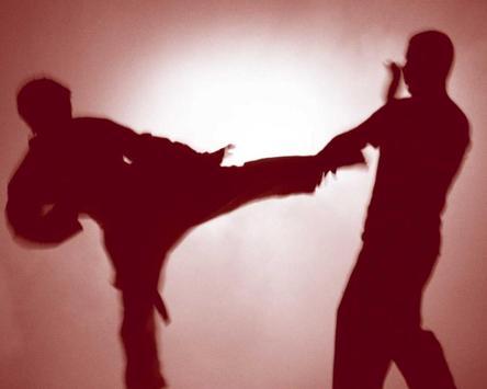 Martial Arts Wallpapers apk screenshot