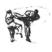 Kyokushin Wallpapers icon