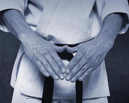 Kyokushin Wallpapers apk screenshot
