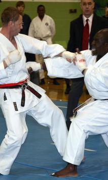 Karate Wallpapers poster