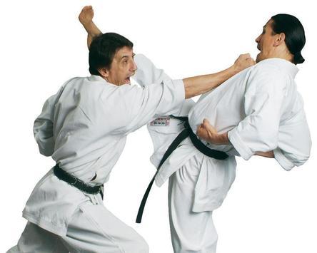 Karate Wallpapers apk screenshot