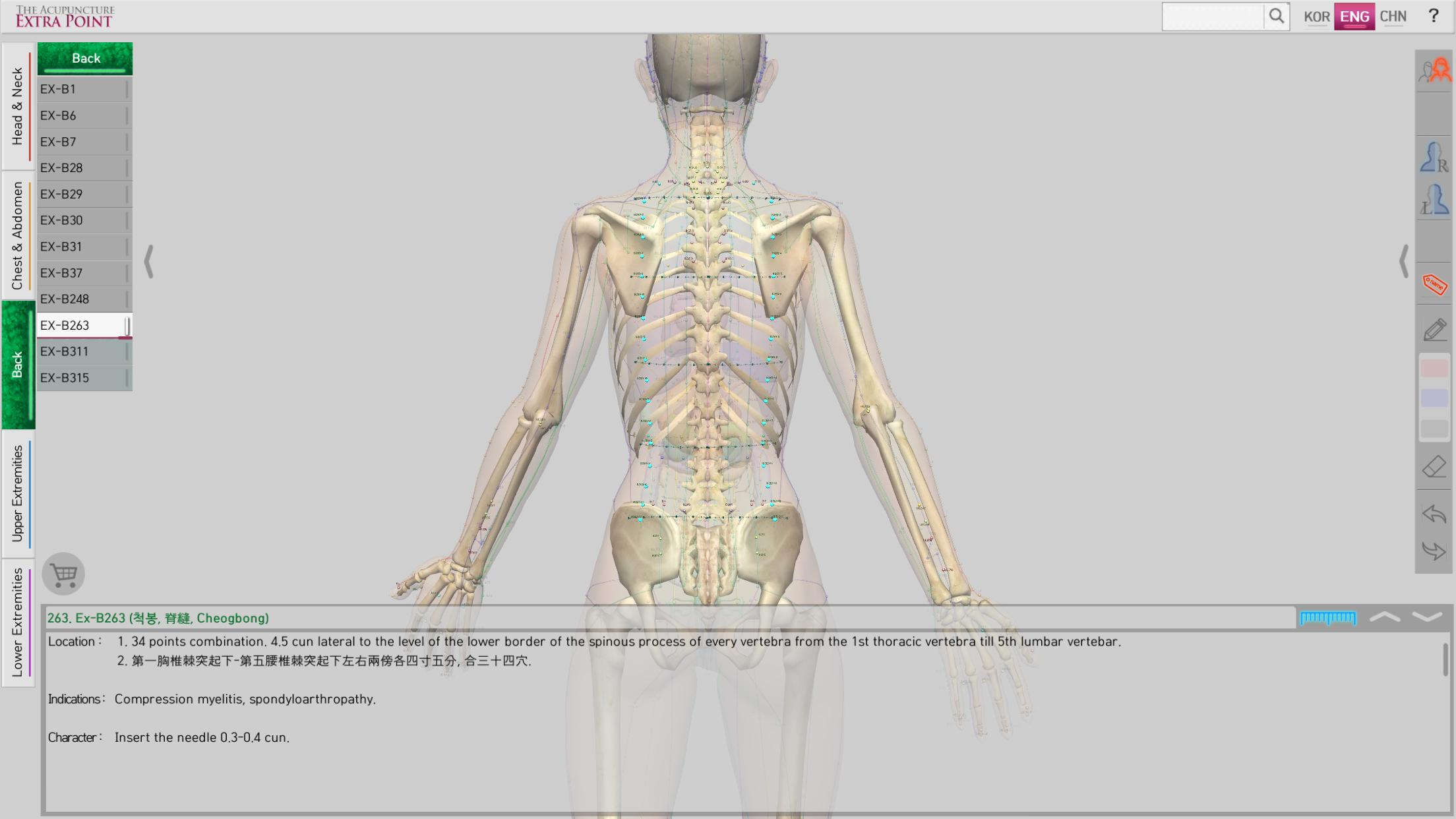 The Acupuncture of Extra Point Lite for Android - APK Download