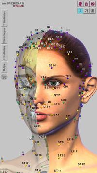 The Meridian Inside Lite poster
