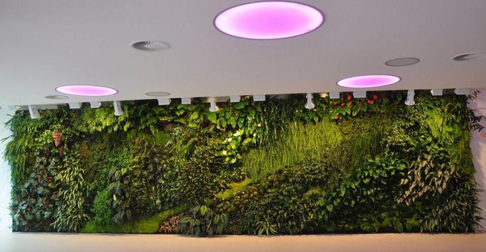 Vertical Garden Designs screenshot 3