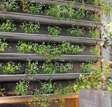 Vertical Garden Designs screenshot 4