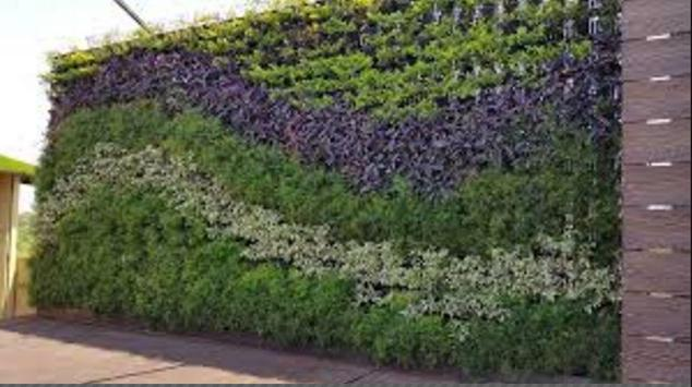 Vertical Garden Designs screenshot 7