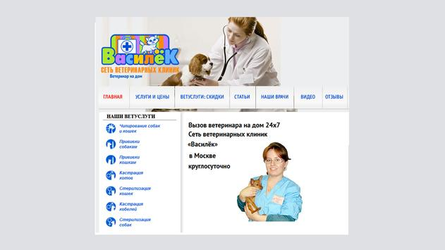 Vet clinic with support online poster