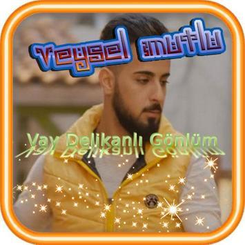 Song Veysel & Carlas poster