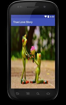 True Love Story poster