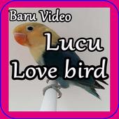 Baru Video Lucu Love Bird icon