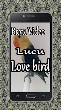 Baru Video Lucu Love Bird poster