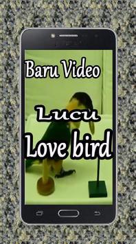 Baru Video Lucu Love Bird screenshot 2