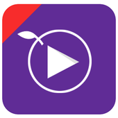 Video Downloader Pro HD 2017 icon