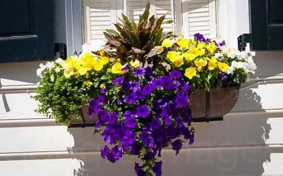 Art Window Boxes Planters 2018 poster