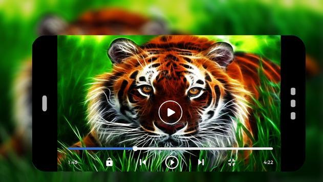 lecteur Real media player™ screenshot 2